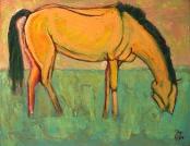 2008.01.06 ex Groot Geel Paard
