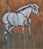 2019.05.17 ex Wit Paard